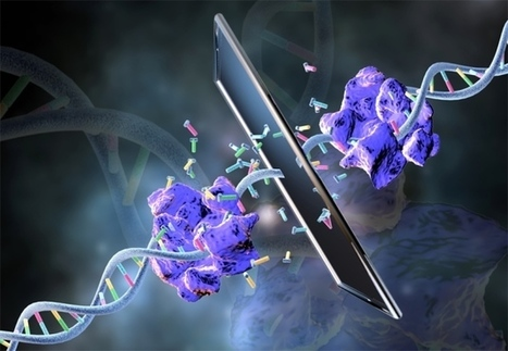Mirror-image polymerase copies mirror-world DNA | Amazing Science | Scoop.it