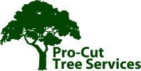 How To Know When To Invest In Tree Removal In Adelaide ~ Melbourne Tree Removal Services | Tree Trimming in Melbourne | Tree Trimming  in Melbourne | Scoop.it