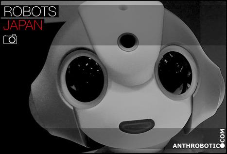 iREX 2015 International Robot Exhibition (GALLERY) | AI, NBI, Robotics & Cybernetics & Android Stuff | Scoop.it