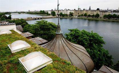 The World Green Roof Congress, Copenhagen 2012 in 3 Weeks! | Sustainable Urban Agriculture | Scoop.it