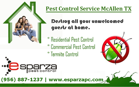 Finding The Pest Control Experts In McAlle | Esparza Pest Control | Scoop.it