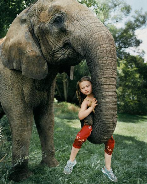 A2-Amélia est une petite fille qui partage une relation privilégiée avec des animaux depuis sa plus tendre enfance | articles FLE | Scoop.it