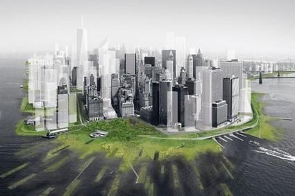 The 'Ecology' of Urban Ecology | Ecological Intelligence | Scoop.it