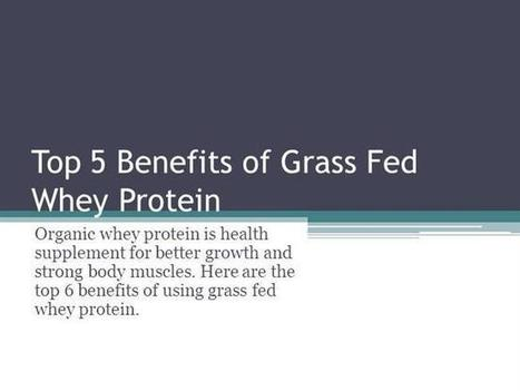 Top 6 Benefits of Grass Fed Whey Protein Ppt Presentation | The Organic Whey - Organic Whey Protein | Scoop.it