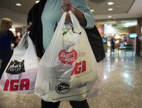 Why bargain-shopping wastes food – and money   Yahoo! News Canada   CALS in the News   Scoop.it