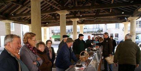 La truffe se fait rare sur les marchés | Agriculture en Dordogne | Scoop.it