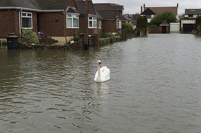 Householders and businesses need to plan long-term flood prevention | Sustain Our Earth | Scoop.it
