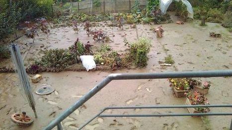 Inondations: Orp-Jauche prend des mesures draconiennes - RTBF Regions | Inondations en Wallonie | Scoop.it