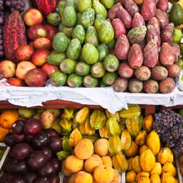 Crolla dell'11% il consumo di frutta esotica in Italia. Aumentano le vendite dei prodotti chilometrizero   myfruit - km0 e consegne a domicilio di frutta e verdura   Scoop.it