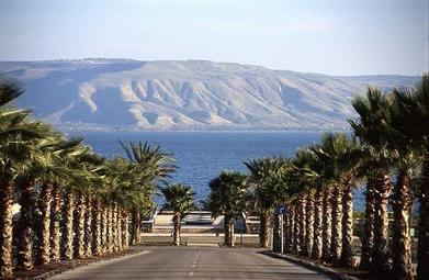 Get tour israel for Vacations | findaGuid | Scoop.it