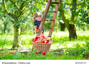 Fostering Health & Wellness in the Introverted Child: Part 3: 3 Healthy Habits - PsychCentral.com | About the World | Scoop.it