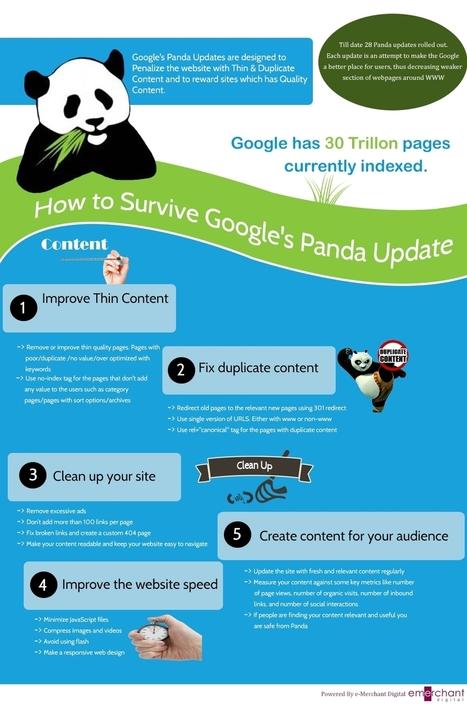 Surviving Google's Panda Update - Infographic | Digital Marketing | Scoop.it