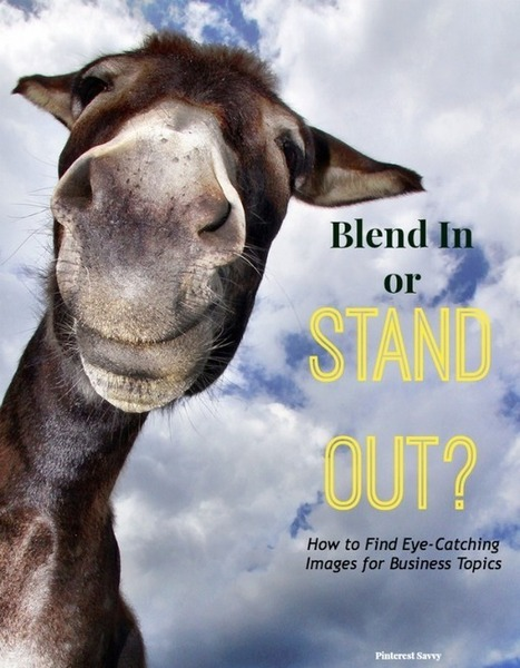 Blend In or Stand Out? How to Find Pinnable Images for Business Topics | Pinterest | Scoop.it