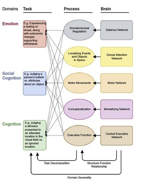 Lisa Feldman Barrett: Why Emotions Are Situated Conceptualizations | Emotion Researcher | Neuroscience and visual thinking | Scoop.it
