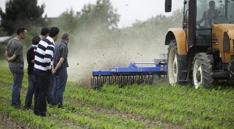 Les groupements d'intérêt économique et environnemental (GIEE)   Minagri   AGRONOMIE VEGETAL   Scoop.it