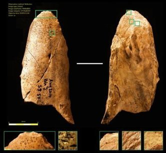 Stone Age humans weren't necessarily more advanced than Neanderthals | Aux origines | Scoop.it