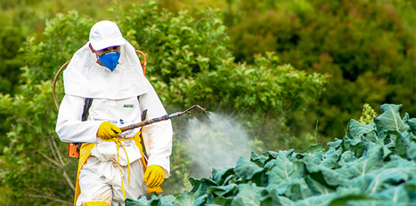 The developing world is awash in pesticides. Does it have to be? | Sustain Our Earth | Scoop.it