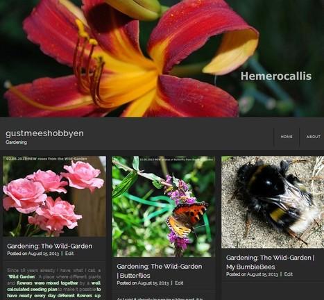 WordPress: NEW Theme | Fontfolio | WordPress and Annotum for Education, Science,Journal Publishing | Scoop.it