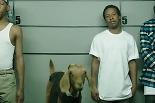 Did This Goat Make 'The Most Racist' Ad in History? | Photography42 | Scoop.it