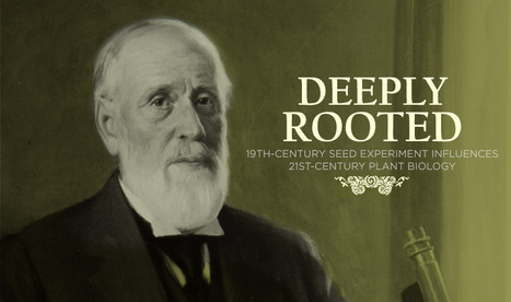 Deeply Rooted | STEM Education models and innovations with Gaming | Scoop.it