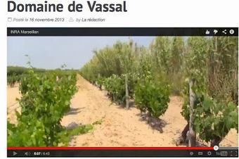 Jim's Loire: Domaine de Vassal petition: who has signed and where ...   Wine & CM   Scoop.it