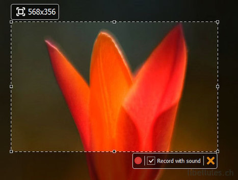 SRecorder - Outil de capture vidéo | What tool to use for your final project in ESL classes. | Scoop.it