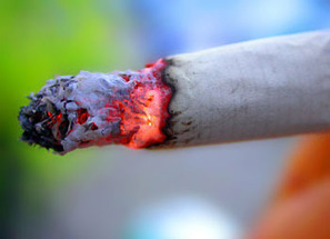 Nicotine Causes Epigenetic Changes in Mice that Spur Cocaine ... | Epigenetics and Perceptions of Human Behavior | Scoop.it