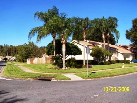 Give a magical look to your home with Tampa Landscaping | Landscaping | Scoop.it