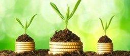 Bijverdienen door passief inkomen: laat je geld voor je werken! | LevensgenieterBlog | Scoop.it