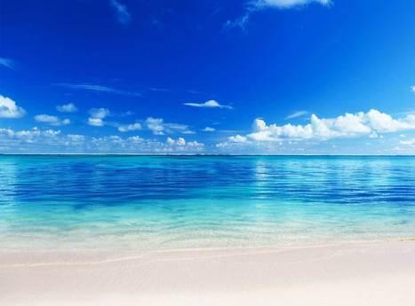 South Beach Hilton | Beach Club Miami | Scoop.it