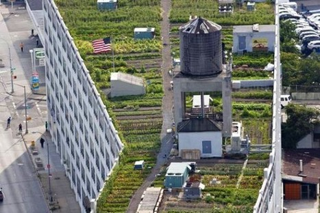 Urban Farming In New York City Is Looking Up | Earthtechling | Vertical Farm - Food Factory | Scoop.it
