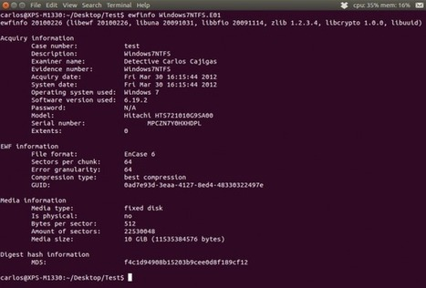 "Mounting E01 images of physical disks in Linux Ubuntu 12.04 | Epyx Forensics | ""Computação Forense"" 