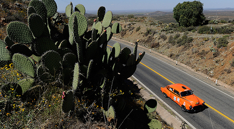 La Carrera Panamericana 2011: Where The Wild Things Are | Historic cars and motorsports | Scoop.it