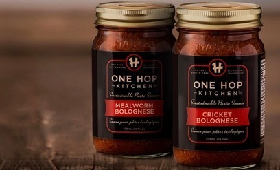 One Hop Kitchen expands edible insects beyond baked goods into pasta sauce | Entomophagy: Edible Insects and the Future of Food | Scoop.it