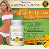 Weight Loss Supplement That really Work
