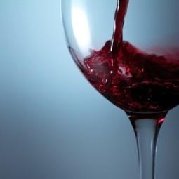 Le vin serait l'ennemi des cellules graisseuses | Découvrir l'univers du vin | Scoop.it