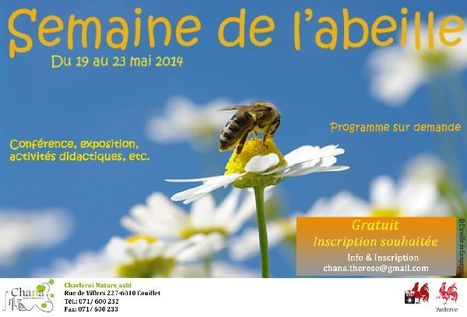 Semaine de l'abeille | Le flux d'Infogreen.lu | Scoop.it