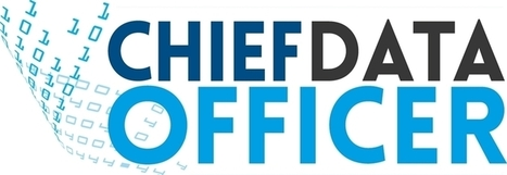 The Rise of Chief Data Officers | Data & Machine intelligence landscape | Scoop.it