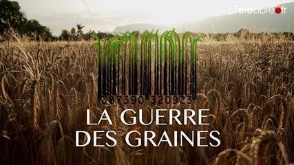 La guerre des graines - Voix Africaine | Je, tu, il... nous ! | Scoop.it
