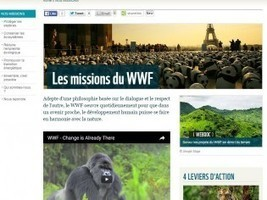 Selon le WWF, la transition énergétique est désormais irréversible » L'actualité du Bâtiment Artisanal | Energies vertes et autres | Scoop.it