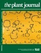 Cloning of the Arabidopsis rwm1 gene for resistance to Watermelon mosaic virus points to a new function for natural virus resistance genes - Ouibrahim - 2014 - The Plant Journal - Wiley Online Library   Interactions plante-pathogène plante-ravageur   Scoop.it