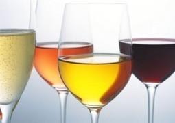 Y a t'il du gluten dans le vin? | Vin Bio et naturel | Scoop.it