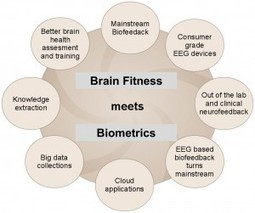 Brain fitness meets HRV and EEG biometrics and neuroinformatics | SharpBrains | Cognitive Enhancement Technologies | Scoop.it