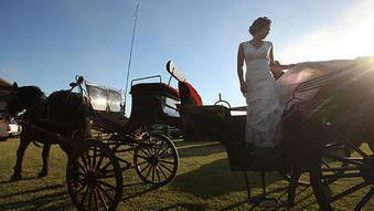 Central California dairy milks a wedding trend | Everything Pinterest | Scoop.it