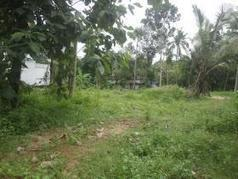Land for Sale in Kottuvally, Ernakulam|11420| Sichermove | Property for sale | Scoop.it