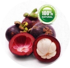 Spend It Wisely Garcinia Cambogia is apt for weight loss | Spend It Wisely | Internet | Scoop.it