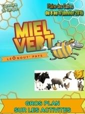 Miel Vert 2016 du 8 au 17 janvier au Tampon | Olivier Nery tourisme | Scoop.it