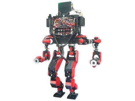 Google's robot group feels leadership void since Rubin's departure | Business Insider | Cultibotics | Scoop.it