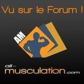 Forum All Musculation : photos, vidéos, exercices et programmes de muscu | congestion maximum en musculation | Scoop.it