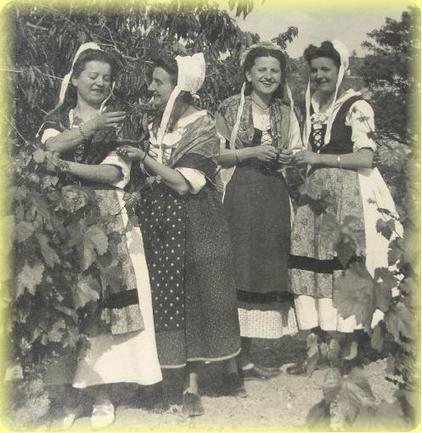 Une histoire du vignoble qui se raconte aujourd'hui encore #Gigondas #LaGardette | Verres de Contact | Scoop.it
